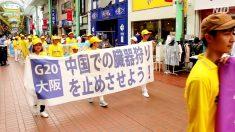 【動画ニュース】まもなくG20サミット 大阪と神戸で反迫害集会とパレード