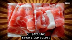 危険な中国のニセモノ食品10選【チャイナ・アンセンサード】