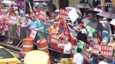 【動画ニュース】蔡英文総統ニューヨーク経由 親中共派らが支持者を殴打