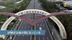 【動画ニュース】上海自由貿易試験区「企業の撤退で抜け殻に」
