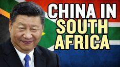 蜜月の南アフリカと中国 いつまで続く?【チャイナ・アンセンサード】