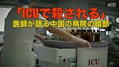 「ICUで殺される」 医師が語る中国の病院の暗部