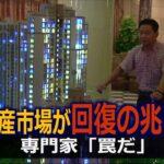 中国メディア「中国不動産市場が回復の兆し」専門家は「罠だ」