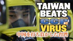 中共ウイルス封じ込め:中国を打ち負かした台湾【チャイナ・アンセンサード】