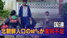 国連 北朝鮮人口の40%が食料不足