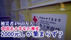 中国南方の洪水災害 赤十字会の募金はわずか2000元?