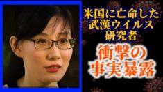 米国亡命の武漢ウイルス研究者 フォックスニュースで証言
