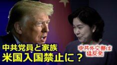 中共党員の米国渡航が禁止の可能性 中国庶民は大歓迎「トランプは反腐敗局局長」【禁聞】