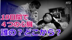 10日間で4つの心臓 中国のオンデマンド臓器移植【禁聞】