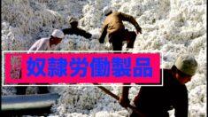 米下院 新疆での奴隷労働製品禁止法案通過