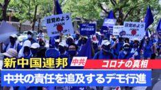 「中共が隠蔽しているコロナの真相」新中国連邦が大阪でデモ行進