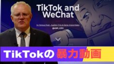 TikTokの暴力動画 豪首相が警告