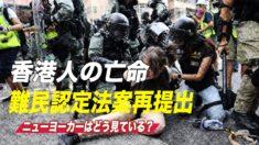 米国は香港人の亡命を受け入れるべきか? ニューヨークの人々はどう思うか?