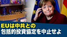 「EUは中共との包括的投資協定を中止せよ」100人以上の専門家が呼びかける【禁聞】
