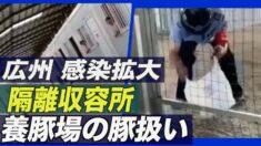 広州で感染拡大 隔離エリア住民に深刻な物資不足【禁聞】