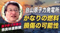 台山原発の放射性物質漏洩疑惑 日本の原子炉専門家「かなりの燃料が損傷している可能性」