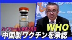 WHO 中国製薬大手シノバック製ワクチンを承認 シノファームに続き2件目