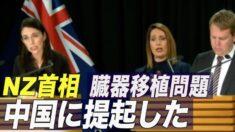NZ与党議員が中共の強制臓器摘出を批判 首相「中国に臓器移植の問題を提起した」