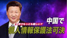 中国で厳しい個人情報保護法が可決 11月施行へ