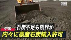 石炭不足も限界か 内々に豪産石炭輸入許可=中国